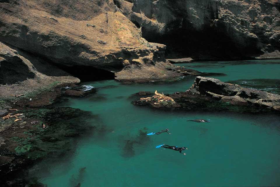 la scuba diving for divers in california santa